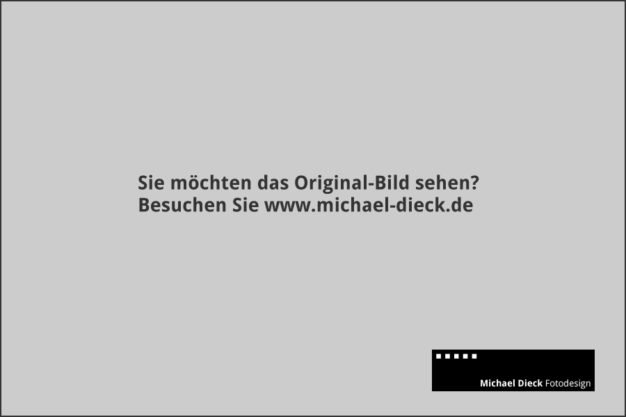 Werbefotografie glänzender Tuerdrücker an Glastür Beschlag